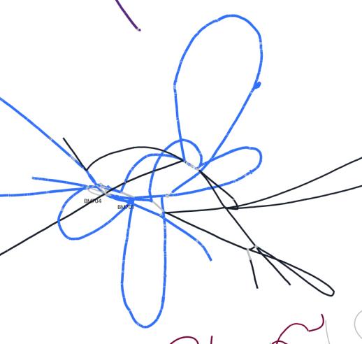 graph-strain1